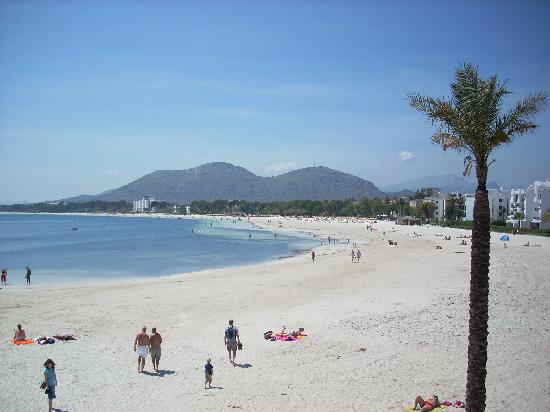 Bay Of Alcudia