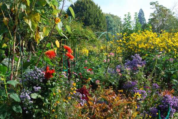 late-autumn-in-the-garden-giverny