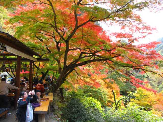 japan october 10